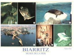 (TT 30) France - Boatrritz Aquarium (with Tortoise, Seal And Shark) Tortue Etc - Turtles