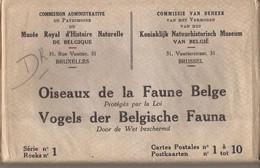 10 CARTES OISEAUX DE LA FAUNE  BELGE - Uccelli