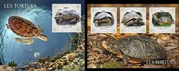 Djibouti 2021, Animals, Turtles, Shape, 3val In BF +BF - Tartarughe