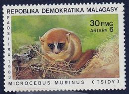 MADAGASCAR (Malagasy) - Faune, Wildlife, Lémuriens, Aye-aye - 1983 - MNH - Madagascar (1960-...)
