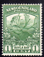 CANADA NEWFOUNDLAND 1919 CARIBOU ISSU SUVLA BAY CENT. 1c MNH - Unused Stamps