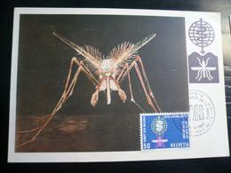 Malaria 1962 Svizzera Maximum - Malattie