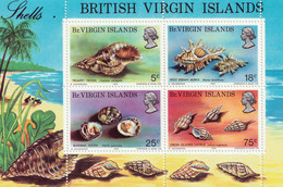 BRITISH VIRGIN ISLANDS - Faune, Coquillages - BF - MNH - Other