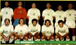 Les Grandes équipes Françaises De Football : F.C. Sochaux - Altri