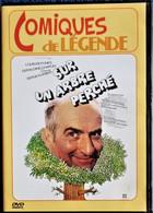 Sur Un Arbre Perché - Louis De Funès - Géraldine Chaplin - Serge Korber . - Commedia