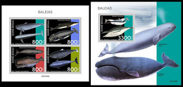 GUINEA BISSAU 2021 - Whales, M/S + S/S. Official Issue [GB210308] - Guinea-Bissau