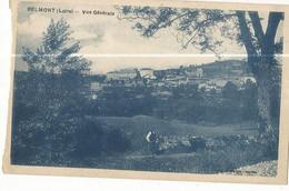 CPA, D.42 , Belmont , Vue Générale , Ed. Combier, 1927 - Belmont De La Loire