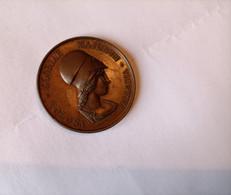 ---1-Medaille-Societe-Archeologique-Du-Midi-De-La-France-1831-M.DCCC.XXXI---Poinçon-Cuivre--EN-SUP-- - Professionnels / De Société
