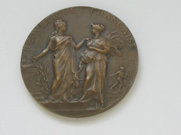 Médaille Associations Agricoles - Ministere De L'agriculture - Graveur ALPHEE DUBOIS    **** EN ACHAT IMMEDIAT **** - Professionnels / De Société