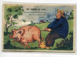 48 GORGES Du TARN Cart à SYSTEME Dépliant 10 Vues Le Cochon  Chonchon Et Le Paysan  écrite Vers 1950    D20 2021 - Non Classificati