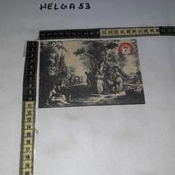 FB11236 FIRENZE 1972 TIMBRO ANNULLO RASSEGNA GASTRONOMICA PRODOTTI TIPICI 1'' MOSTRA ETICHETTE VINO CHIANTI - 1971-80: Storia Postale