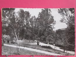 Visuel Très Peu Courant - 42 - Pélussin - Le Jardin Public - 1955 - R/verso - Pelussin