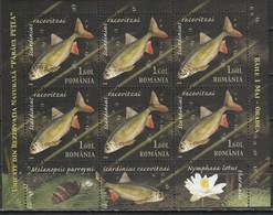 2008 -  Réserves Naturelles  Mi No 6334/6336 KLEINBOGEN - Usati