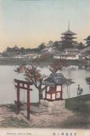 A549) SARUSAWA Pond At NARA - Very Old !! 1917 - Altri