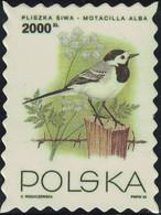 Pologne Timbre Fictif Autocollant Oiseau Motacilla Alba Bergeronnette Grise Scrapbooking - Scrapbooking