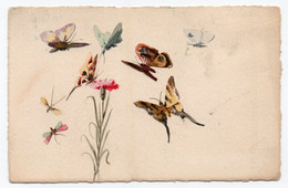 CARTE DESSINEE - Butterflies