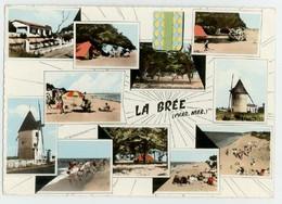 Ile D'Oléron (17 Charente Maritime) La Brée + Flamme Postale La Brée - Ile D'Oléron