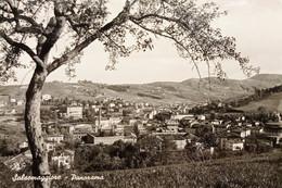 Cartolina - Salsomaggiore - Panorama - 1952 - Parma