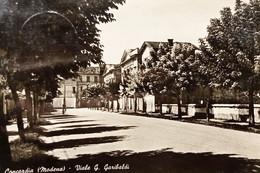 Cartolina - Concordia ( Modena ) - Viale G. Garibaldi - 1954 - Modena