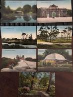 7 Cpa, BIDSTON BIRKENHEAD (Park: Entrance, Lake And Bridge, Palm House, Bidston Hill : Windmill, Pine Woods, Observatory - Altri