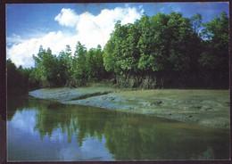 AK 003111 THAILAND - Royal Forest Department - Tailandia