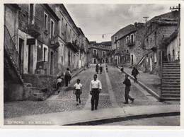 COTRONEI-CATANZARO-VIA BOLOGNA-CARTOLINA VERA FOTOGRAFIA VIAGGIATA IL 2-3-1955 - Catanzaro