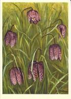 FLORE + Carte Postale Neuve Jean ZELTNER Fils + N° 75 :Liliaceae Fritillaria Meleagris - Fritillaire +Fabrication Suisse - Fiori