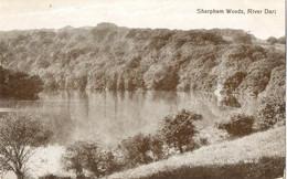 Sharpham House, River Dart (Valentines Series No 8012X) Near Totnes, Paignton - Altri