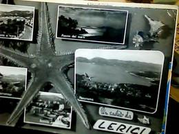 LERICI VEDUTE SALUTI STELLA MARINA CONCHIGLIA SHELL CONCHIGLIE   VB1972   IG10590 - La Spezia