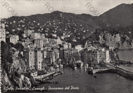 CARTOLINA  CAMOGLI,GENOVA,LIGURIA,GOLFO PARADISO,PANORAMA DEL PORTO,LUNGOMARE,SPIAGGIA,ESTATE,VACANZA,VIAGGIATA 1954 - Genova