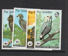 BIRDS -  GAMBIA - WWF BIRDS SET OF 4  MINT NEVER HINGED, SG. CAT £53 - Piccioni & Colombe
