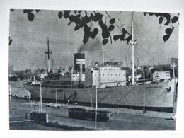 Polish School Ship Kapitan K Maciejewicz  Szczecin Port  /   Photo Reproduction - Autres