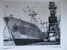Hungarian Cargo Ship Budapest  In Szczecin Port   /  Photo Reproduction - Autres