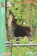 Carte Prépayée JAPON  - ANIMAL  - OKAPI - JAPAN Prepaid Passnet Tobu Bus Card / Girafe Giraffe - 164 - Non Classificati