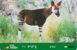 Carte Prépayée JAPON  - ANIMAL  - OKAPI - JAPAN Prepaid Passne Sotetsu Train Card / Girafe Giraffe - 168 - Non Classificati