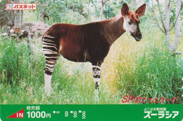 Carte Prépayée JAPON  - ANIMAL- OKAPI - JAPAN Prepaid Passnet SF Tobu Bus Card / Girafe Giraffe - 169 - Non Classificati