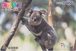 Carte Prépayée JAPON / Série Animaux Rakuyan - ANIMAL - KOALA - JAPAN Prepaid Card Train Ticket - 354 - Altri