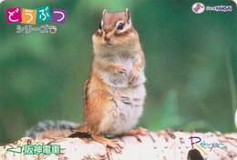 RARE Carte JAPON  / Série Animaux Rakuyan - ANIMAL - ECUREUIL - SQUIRREL JAPAN Prepaid Card - EICHHÖRNCHEN - Altri
