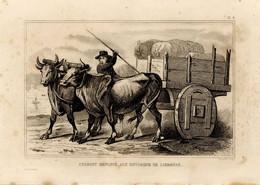 1846 Print Portugal Lisbon Transport Bull Cart - Stampe & Incisioni