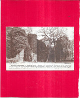 BLANDY LES TOURS - 77 -  Les Ruines Du Château Féodal - DELC4 - - Melun