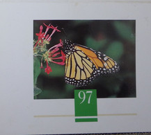 Petit Calendrier De Poche 1997 Papillon Satation Elf St Saint Colombier En Sarzeau Morbihan - Formato Piccolo : 1991-00