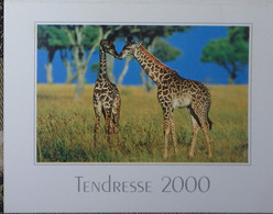 Petit Calendrier De Poche 2000 Girafe - Coiffeur Coiffure Aigre Charente - Formato Piccolo : 1991-00
