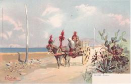 Palermo - Dintorni, Cartolina Illustrata S. Civiletti - Palermo