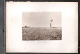Claude Monet, Les Coquelicots ( Reproduction Papier) - Altri