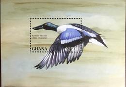 Ghana 1995 Ducks Birds Minisheet MNH - Non Classificati
