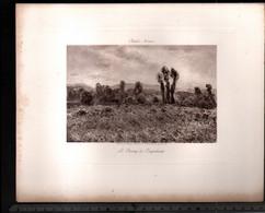 Claude Monet, Le Champ De Coquelicots ( Reproduction Papier) - Altri