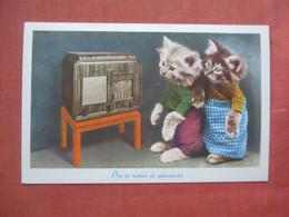 Dressed. Cats With Radio.  >   Ref 5216 - Gatti
