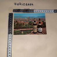 C-101298 FIRENZE PANORAMA TIMBRO ANNULLO 1991 10'' RASSEGNA DELL'ALIMENTAZIONE VINO CHIANTI RUFFINO - Firenze