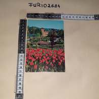 C-101300 TORINO CASTELLO MEDIOEVALE TIMBRO ANNULLO 42'' FESTIVAL INTERNAZIONALE CINEMA SPORTIVO - Altri