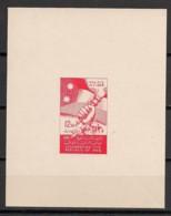 Syrie - 1958 - Block N° V27 - 1 Luxus Sheetlet - Iraq - Neuf Luxe ** / MNH / Postfrisch - Syria